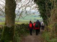 Back Along the Bridleway